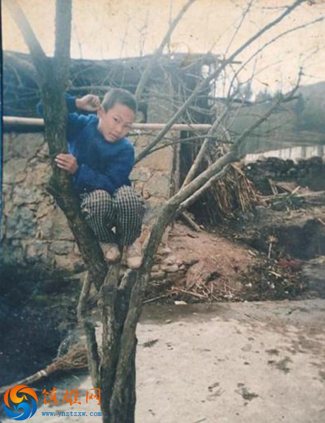 寻找孙大银-2005年于昭通市镇雄县黑树镇黑树村离家后失踪